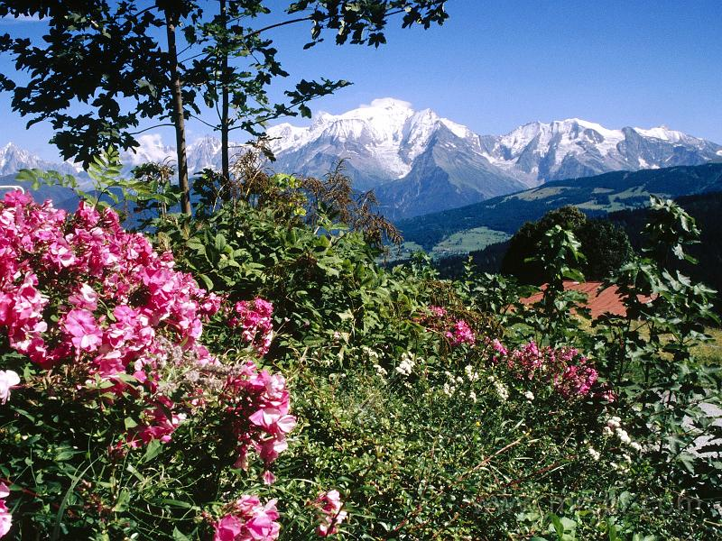 mont blanc view from cordon village haute-savoie france.jpg